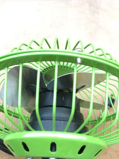蝌蚪电子(TADPOLE) usb风扇迷你静音学生宿舍小风扇大风力办公室桌面静音小电扇 靓丽粉★基础版★4英寸 晒单图
