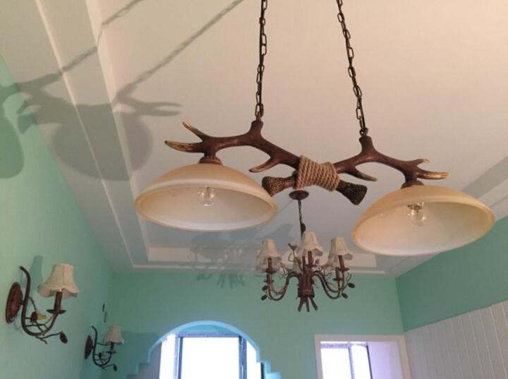 赫曼复古客厅吊灯美式乡村个性餐厅现代饭厅卧室地中海田园北欧式小鸟松果吊灯具LB8022 双头壁灯 晒单图