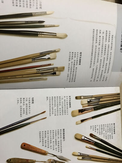 西方经典美术技法译丛:油画的光与色(新1版) 晒单图