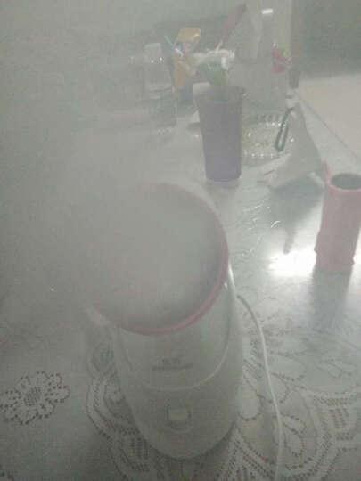 金稻(KingDom) 蒸脸器家用美容仪补水仪器保湿喷雾加湿蒸脸器洁面仪蒸脸机 热喷机KD-2331 晒单图