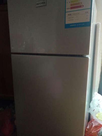 帕琪丝(PATCHES) 小型冰箱 双门迷你小型电冰箱 家用冷藏冰箱 53L 晒单图