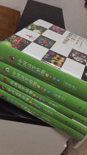 中国高等植物彩色图鉴  第四卷 被子植物 罂粟科—毒鼠子科 晒单图