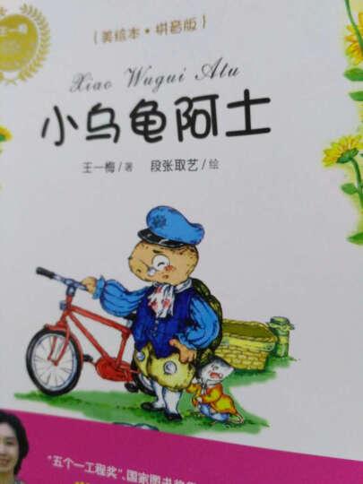 小乌龟阿土(美绘本 拼音版)/王一梅乡土·乡韵童话系列 晒单图