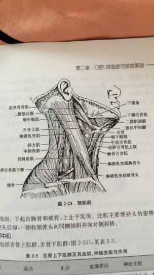 口腔解剖生理学(第2版)(附光盘) 晒单图
