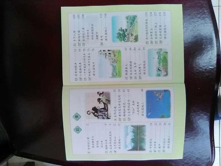 人教版小学4四年级下册语文书课本教材 小学四年级语文下册课本 晒单图