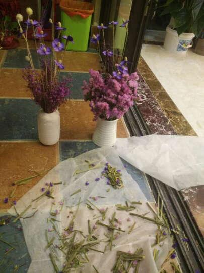 繁花故里 尤加利木棉花花束干花套装客厅装饰花瓶摆件 绣球尤加利-不含花瓶 晒单图