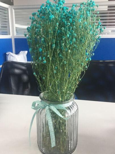 繁花故里 尤加利木棉花花束干花套装客厅装饰花瓶摆件 蓝星 晒单图