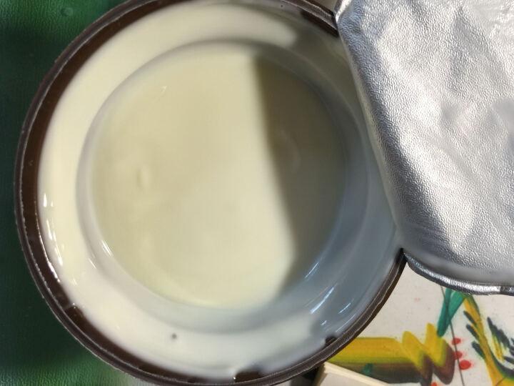 芭蔻玛(Bakoma)波兰进口西式甜品牛奶 椰子味 140g*12 晒单图