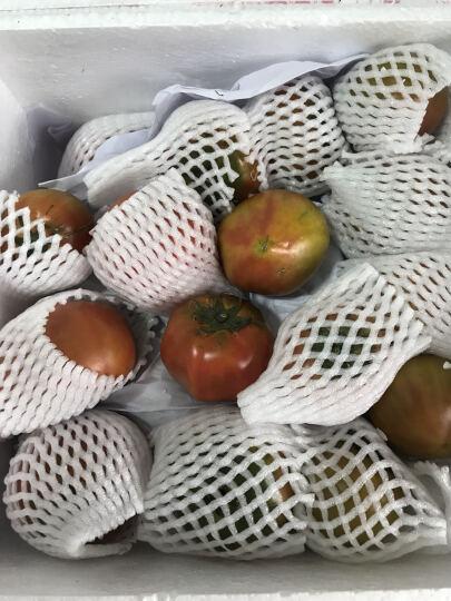 东北特产新鲜铁皮西红柿柿子 盐碱地草莓柿子丹东油柿子番茄绿腚柿子 5kg 晒单图