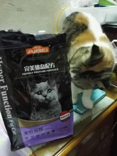 MADDEN 爱倍猫粮 宠物主粮 全阶段全种猫粮 猫咪主粮 全期猫咪适用 爱倍全阶段全猫种猫粮1kg 不吃包退 晒单图