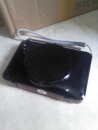 雷登(OHAYO) 定时器插座ZL-67 智能厨房开关定时器 电动车充电宝手机充电倒计时 晒单图