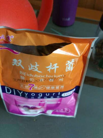 【2件8折 4件7折】川秀酸奶发酵菌 (进口7菌)双歧杆菌儿童益生菌酸奶发酵剂 9包+酸奶机 晒单图