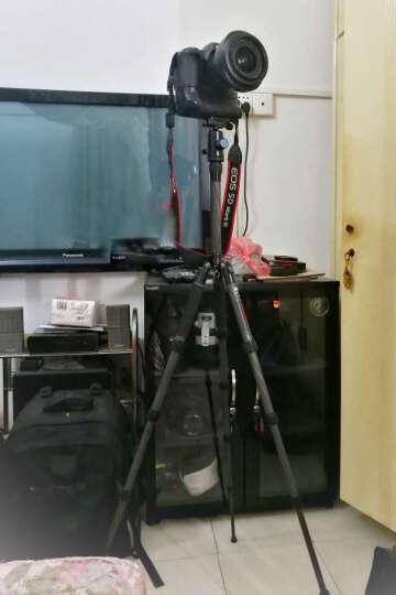 思锐(SIRUI)三脚架 T025X+C10S 碳纤维反折单反相机三脚架 便携迷你 微单通用 晒单图
