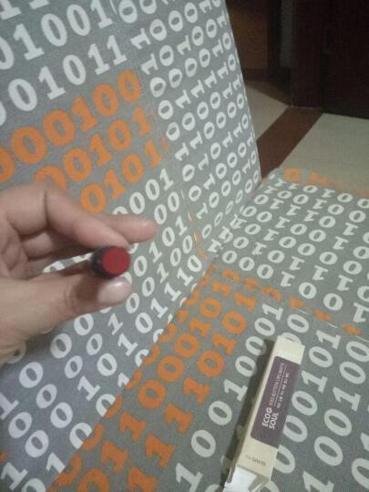 土耳其flormar口红DC29脏橘色哑光雾面丝绒金管唇膏不易脱色 DC22 烈焰红 晒单图