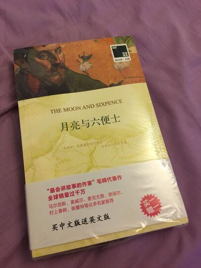 月亮与六便士(赠英文版)/双语译林壹力文库 晒单图