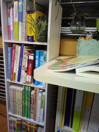 凤凰师轩·行知工程创新教学思想系列:大问题教学的形与神 晒单图