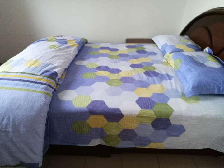 SAINTMARC罗莱出品 273纱支立体提花全棉四件套 纯棉床上用品床品套件床单被罩 哈瓦那星辰 200*230 晒单图