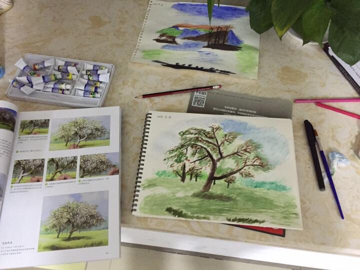 【正版包邮】水彩的诀窍 Terry Harrison 教你画风景 水彩画教程 自学水彩画技法入门基础 晒单图
