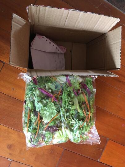 老一生鲜  蔬菜色拉 生菜沙拉 套餐 半成品 密封包装需洗后食用 500g 晒单图