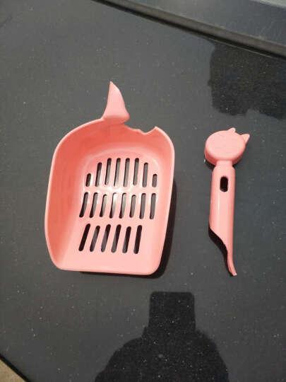 哈特丽宠物用品猫咪清洁猫厕所多格猫头塑料猫砂铲多格猫铲子加厚 晒单图