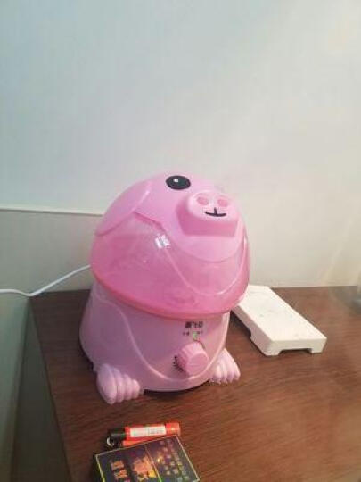 教师节礼物教师节礼物卡通静音办公室家用大容量双喷迷你空气加湿器 粉猪 晒单图