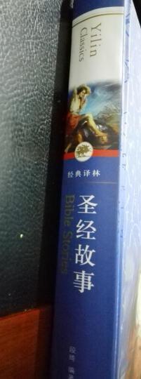圣经故事/经典译林 晒单图