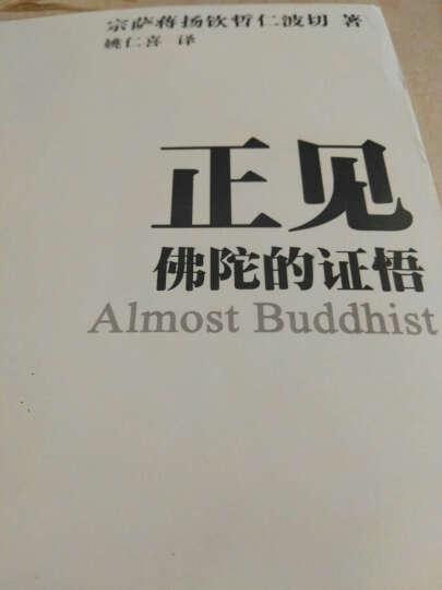 正版   正见:佛陀的证悟(全新修订版) 晒单图