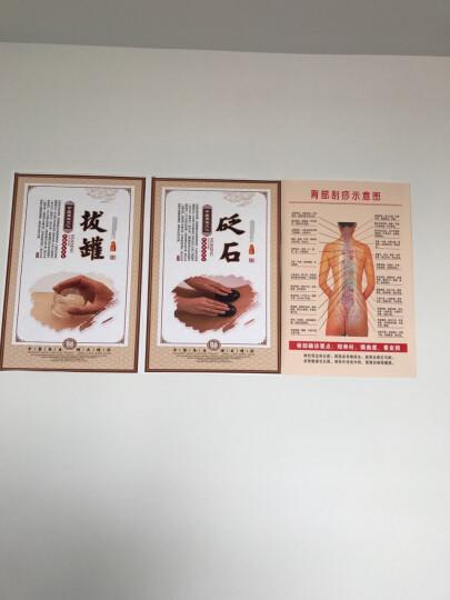 人体穴位挂图中医宣传海报背部刮痧示意图脊背确诊贴画WSA20 覆膜防水PP贴纸 100*70厘米 晒单图