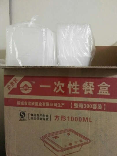采易(MINING EASY) 一次性饭盒外卖打包盒塑料透明盒pp食品加厚快餐便当带盖 方形一箱300套含盖 容量1000ml 晒单图