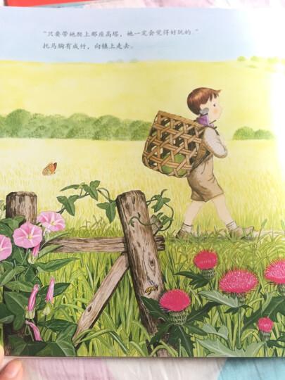 【99元10件】海豚童书 小女巫 平装 海豚绘本花园 0-3-6岁亲子共读绘本童书 生命教育 晒单图