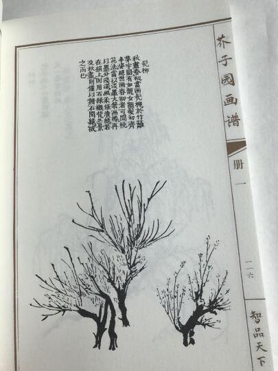 芥子园画谱全册传山水集彩色版原版线装全4册 晒单图