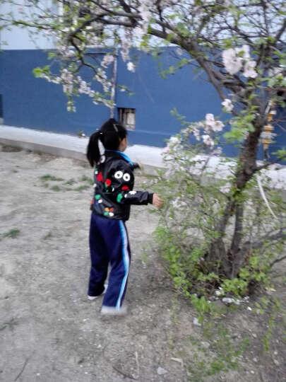 波特星女童外套春夏秋装上衣2017新款儿童装皮夹克秋款韩版中大童女孩皮甲克潮图片色150 图片色(偏小一码) 140适合身高130cm 晒单图