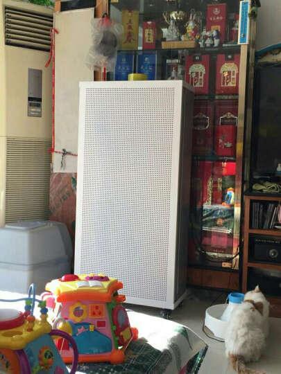 幸福FFU空气净化器家用商用净化设备 办公室教室抗雾霾除尘空气净化器甲醛大型净化器 熊猫经典款 晒单图