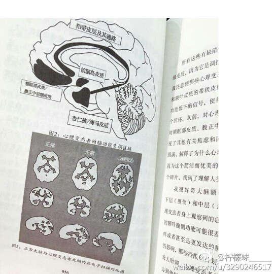 天生变态狂:TED心理学家的脑犯罪之旅 晒单图