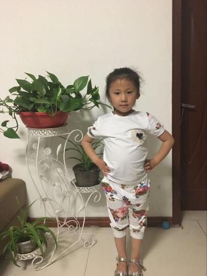 女童春装套装2019新款洋气韩版儿童春秋时髦休闲卫衣运动两件套潮 红色 160 晒单图
