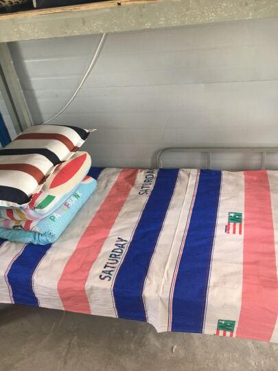 ISSZ  学生宿舍全棉床单单件纯棉1.0米单人床上下铺男生简约全棉寝室女可爱1.5m夏季清爽 一见钟情 120*230cm单件床单 晒单图