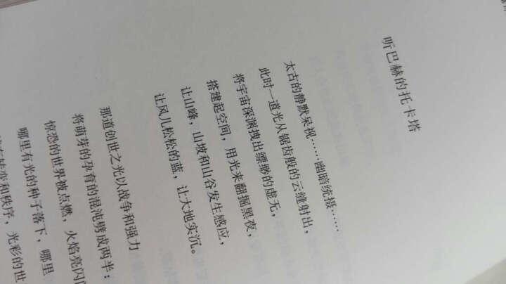新陆诗丛·外国卷:黑塞诗选 晒单图