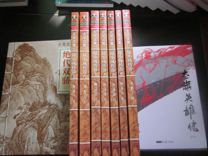 古龙文集·七种武器4:愤怒的小马·七杀手 晒单图