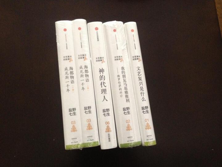 【中信出版社】文艺复兴的故事01:文艺复兴是什么 晒单图