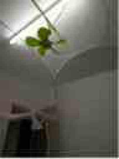 物有物语 烤火盆 多功能家用电火盆取暖器烤火炉宿舍办公冬季 电火盆 标配+3米定时线+扎带 晒单图