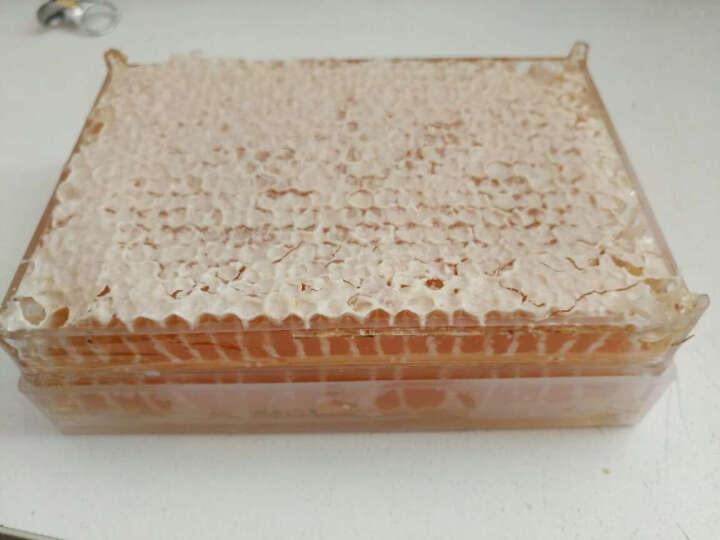 淘蜜郎(HONEY TAO) 淘蜜郎百花蜜新巢蜜天然土蜂蜜蜂巢蜜东北黑蜂蜜盒装500g 晒单图