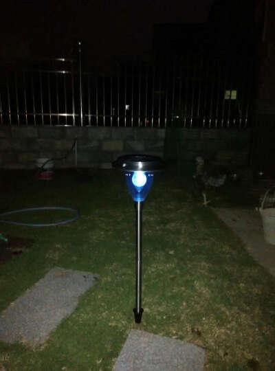 太阳能户外庭院灯草坪灯不锈钢家用LED路灯装饰灯园林景观地插灯 CP-D612 晒单图