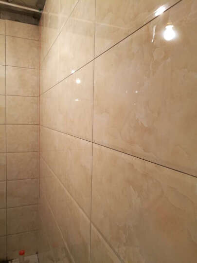 宝润 瓷砖 卫生间瓷砖300 600 浴室墙砖 厨卫砖 防滑地砖 防污建材家装 墙砖300*600mm 600*300花片/墙砖 晒单图