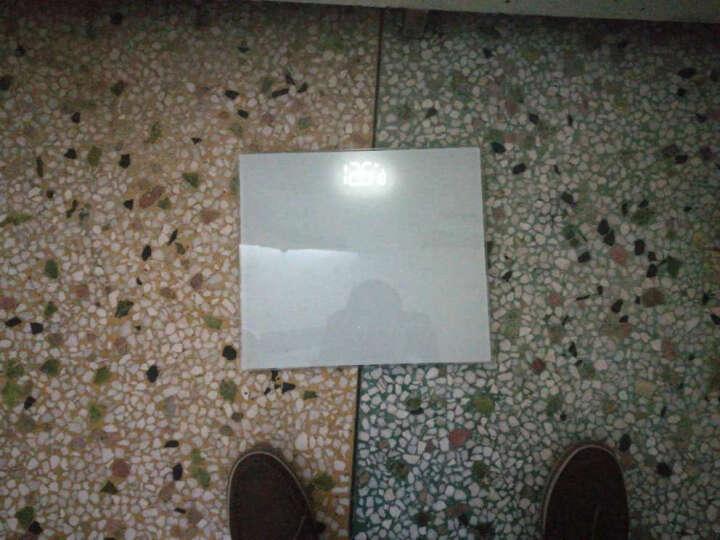 香山EB829HJ 电子秤健康称 体重秤(象牙白) 晒单图