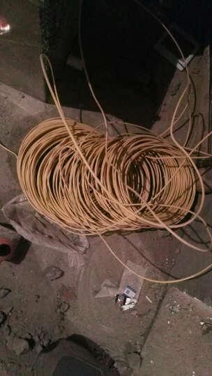 熊猫电线电缆 BV2.5平方单芯线国标电线双色 黄绿 100米绕包 晒单图