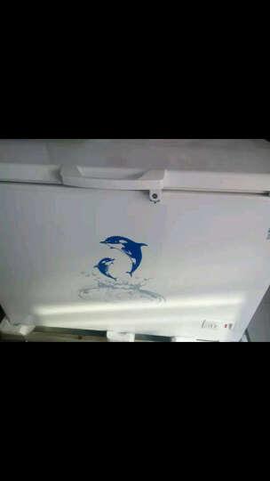 澳柯玛(AUCMA) BC/BD-258VNE 冷藏冷冻转换变温蝶形门 卧式商用冷柜 冰柜 晒单图