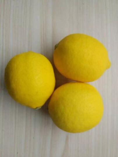 【安岳馆】 雷蒙 安岳柠檬中大果 黄柠檬 1000g 晒单图