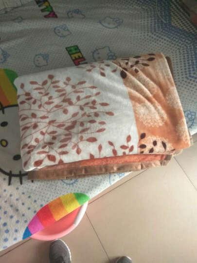 茉轩 法兰绒升级版雪貂绒毛毯 春夏午睡空调毯 床单毛巾被 双面绒盖毯 薄毯子 咖色大格 230*250cm 晒单图