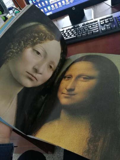 隐秘的知识:重新发现西方绘画大师的失传技艺(增订版) 晒单图
