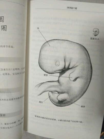 怀孕:怀孕圣经+怀孕日记(套装全2册) 晒单图